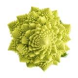 Λαχανικό μπρόκολου Romanesco που απομονώνεται στο άσπρο υπόβαθρο Στοκ εικόνα με δικαίωμα ελεύθερης χρήσης