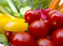 λαχανικό πιάτων Στοκ Φωτογραφίες