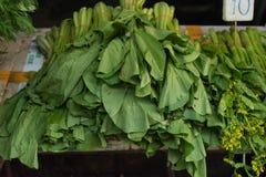 Λαχανικό ποσού Choy στην αγορά παντοπωλείων στοκ εικόνες