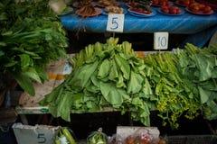 Λαχανικό ποσού Choy στην αγορά παντοπωλείων στοκ εικόνα