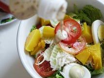 Λαχανικό σαλάτας με το φρέσκο υγιές πρόγευμα σαλτσών σαλάτας Στοκ εικόνες με δικαίωμα ελεύθερης χρήσης
