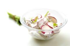λαχανικό σαλάτας Στοκ Φωτογραφία