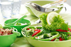 λαχανικό σαλάτας Στοκ εικόνες με δικαίωμα ελεύθερης χρήσης
