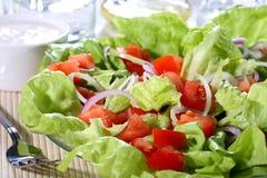 λαχανικό σαλάτας Στοκ φωτογραφίες με δικαίωμα ελεύθερης χρήσης