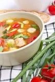 λαχανικό σούπας κοτόπου&la Στοκ εικόνα με δικαίωμα ελεύθερης χρήσης