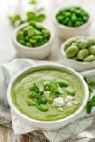 λαχανικό σούπας κρέμας Σούπα ευρέων φασολιών που ψεκάζεται με τη φρέσκα μέντα και το τυρί φέτας Εύγευστα και θρεπτικά χορτοφάγα τ Στοκ φωτογραφία με δικαίωμα ελεύθερης χρήσης