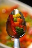 λαχανικό σούπας Στοκ εικόνα με δικαίωμα ελεύθερης χρήσης