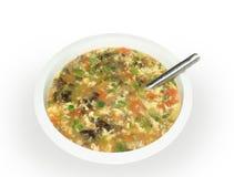 λαχανικό σούπας Στοκ Εικόνες