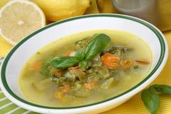 λαχανικό σούπας Στοκ Εικόνα