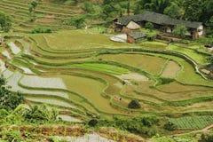 λαϊκό fubao house36 στοκ εικόνες με δικαίωμα ελεύθερης χρήσης