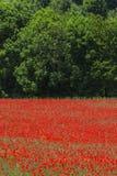 Λα Breole (Haute Provence) Στοκ φωτογραφία με δικαίωμα ελεύθερης χρήσης