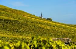 Λα CÃ'te, Vaud, Ελβετία περιοχής οινοκαλλιέργειας στοκ φωτογραφία με δικαίωμα ελεύθερης χρήσης