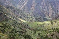 ΛΑ GOMERA, ΙΣΠΑΝΊΑ: Ορεινό και πράσινο τοπίο με τους terraced τομείς μεταξύ Agulo και Vallehermoso Στοκ Φωτογραφία