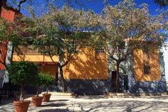Λα laguna Ισπανία tenerife καναρινιών isnalds Στοκ εικόνες με δικαίωμα ελεύθερης χρήσης