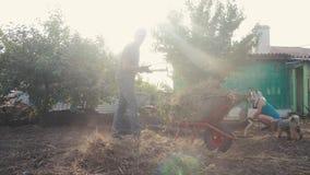 Λειτουργώντας κηπουρική ανδρών και γυναικών καθαρή η χλόη Εργασία στον τρόπο ζωής γεωργίας κήπων ο αγρότης φορτώνει τα απορρίμματ φιλμ μικρού μήκους