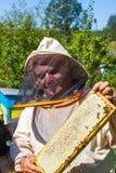 Λειτουργώντας apiarist και πλαίσιο με τις μέλισσες Στοκ Εικόνες