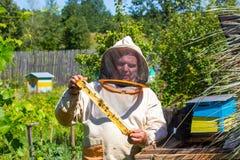 Λειτουργώντας apiarist και πλαίσιο με τις μέλισσες Στοκ εικόνα με δικαίωμα ελεύθερης χρήσης