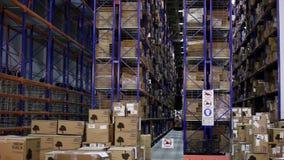 Λειτουργώντας forklift μέσα σε μια τεράστια αποθήκη εμπορευμάτων φιλμ μικρού μήκους