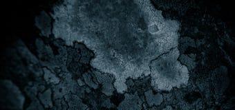 Λειχήνα αφηρημένο σκηνικό υποβάθρου βράχου στο αφηρημένο της λειχήνας και της πέτρας/του τραχιού υποβάθρου σύστασης Στοκ Εικόνες
