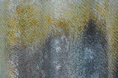 Λειχήνα-καλυμμένο παλαιό κυματιστό υπόβαθρο πλακών Ηλικίας κυματιστή πλάκα με το βρύο, κινηματογράφηση σε πρώτο πλάνο λειχήνων Στοκ Φωτογραφία