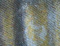 Λειχήνα-καλυμμένο παλαιό κυματιστό υπόβαθρο πλακών Ηλικίας κυματιστή πλάκα με το βρύο, κινηματογράφηση σε πρώτο πλάνο λειχήνων Στοκ Εικόνες