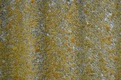 Λειχήνα-καλυμμένο παλαιό κυματιστό υπόβαθρο πλακών Ηλικίας κυματιστή πλάκα με το βρύο, κινηματογράφηση σε πρώτο πλάνο λειχήνων Στοκ εικόνες με δικαίωμα ελεύθερης χρήσης