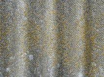 Λειχήνα-καλυμμένο παλαιό κυματιστό υπόβαθρο πλακών Ηλικίας κυματιστή πλάκα με το βρύο, κινηματογράφηση σε πρώτο πλάνο λειχήνων Στοκ φωτογραφία με δικαίωμα ελεύθερης χρήσης