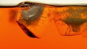 Λειωμένο μέταλλο κύβων πάγου στενό σε επάνω τσαγιού ή ουίσκυ φιλμ μικρού μήκους