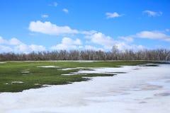 Λειωμένο μέταλλο χιονιού την πρώιμη άνοιξη Στοκ εικόνες με δικαίωμα ελεύθερης χρήσης