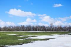 Λειωμένο μέταλλο χιονιού την πρώιμη άνοιξη Στοκ φωτογραφία με δικαίωμα ελεύθερης χρήσης