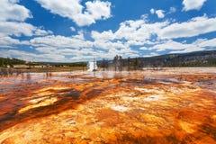 Λεκάνη Yellowstone, Ουαϊόμινγκ, ΗΠΑ μπισκότων Στοκ εικόνες με δικαίωμα ελεύθερης χρήσης