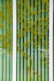 Λεκιασμένα μεγάλα παράθυρα παραθύρων γυαλιού Τοίχος του γυαλιού ένας σκληρός, Βρετανός απεικόνιση αποθεμάτων