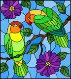 Λεκιασμένη απεικόνιση γυαλιού με το ζευγάρι των lovebirds παπαγάλων πουλιών στο δέντρο κλάδων με τα πορφυρά λουλούδια ενάντια στο Στοκ Εικόνες