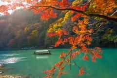 Λεμβούχος που κλοτσά τη βάρκα στον ποταμό Arashiyama στην εποχή φθινοπώρου κατά μήκος του ποταμού στο Κιότο, Ιαπωνία Στοκ φωτογραφία με δικαίωμα ελεύθερης χρήσης