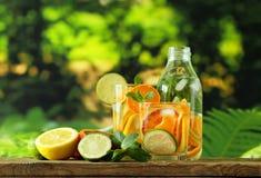 Λεμονάδα θερινών εσπεριδοειδών με το πορτοκάλι, ασβέστης στοκ εικόνα με δικαίωμα ελεύθερης χρήσης