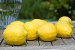 λεμόνια κήπων Στοκ φωτογραφίες με δικαίωμα ελεύθερης χρήσης