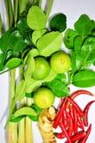 Λεμόνια και άλλα καρυκεύματα για την παραγωγή των επιλογών τροφίμων Στοκ φωτογραφίες με δικαίωμα ελεύθερης χρήσης