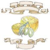 Λεμόνια με τα φύλλα και κορδέλλες Στοκ εικόνα με δικαίωμα ελεύθερης χρήσης