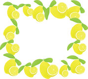 λεμόνια πλαισίου ηλιακά Στοκ φωτογραφία με δικαίωμα ελεύθερης χρήσης