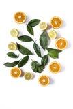 Λεμόνια πορτοκαλιών ands στο ελαφρύ υπόβαθρο Στοκ Εικόνες