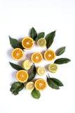 Λεμόνια πορτοκαλιών ands στο ελαφρύ υπόβαθρο Στοκ εικόνες με δικαίωμα ελεύθερης χρήσης