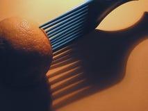 Λεμόνι επιλογής Στοκ φωτογραφία με δικαίωμα ελεύθερης χρήσης