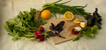 Λεμόνι και κρεμμύδι Στοκ φωτογραφία με δικαίωμα ελεύθερης χρήσης