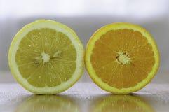 Λεμόνι και πορτοκάλι Στοκ φωτογραφία με δικαίωμα ελεύθερης χρήσης