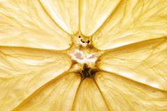 λεμόνι καρπού Στοκ εικόνα με δικαίωμα ελεύθερης χρήσης