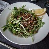 Λεμόνι καλημέρας τροφίμων μια πράσινη σαλάτα Στοκ εικόνα με δικαίωμα ελεύθερης χρήσης