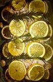 λεμόνι κοτόπουλου Στοκ εικόνα με δικαίωμα ελεύθερης χρήσης