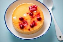 Λεμόνι ξινό με τα κόκκινα φρούτα Στοκ εικόνες με δικαίωμα ελεύθερης χρήσης