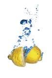 Λεμόνι που πέφτουν φρέσκο στο νερό με τις φυσαλίδες Στοκ Εικόνες