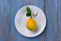 Λεμόνι στο άσπρο πιάτο Στοκ εικόνες με δικαίωμα ελεύθερης χρήσης